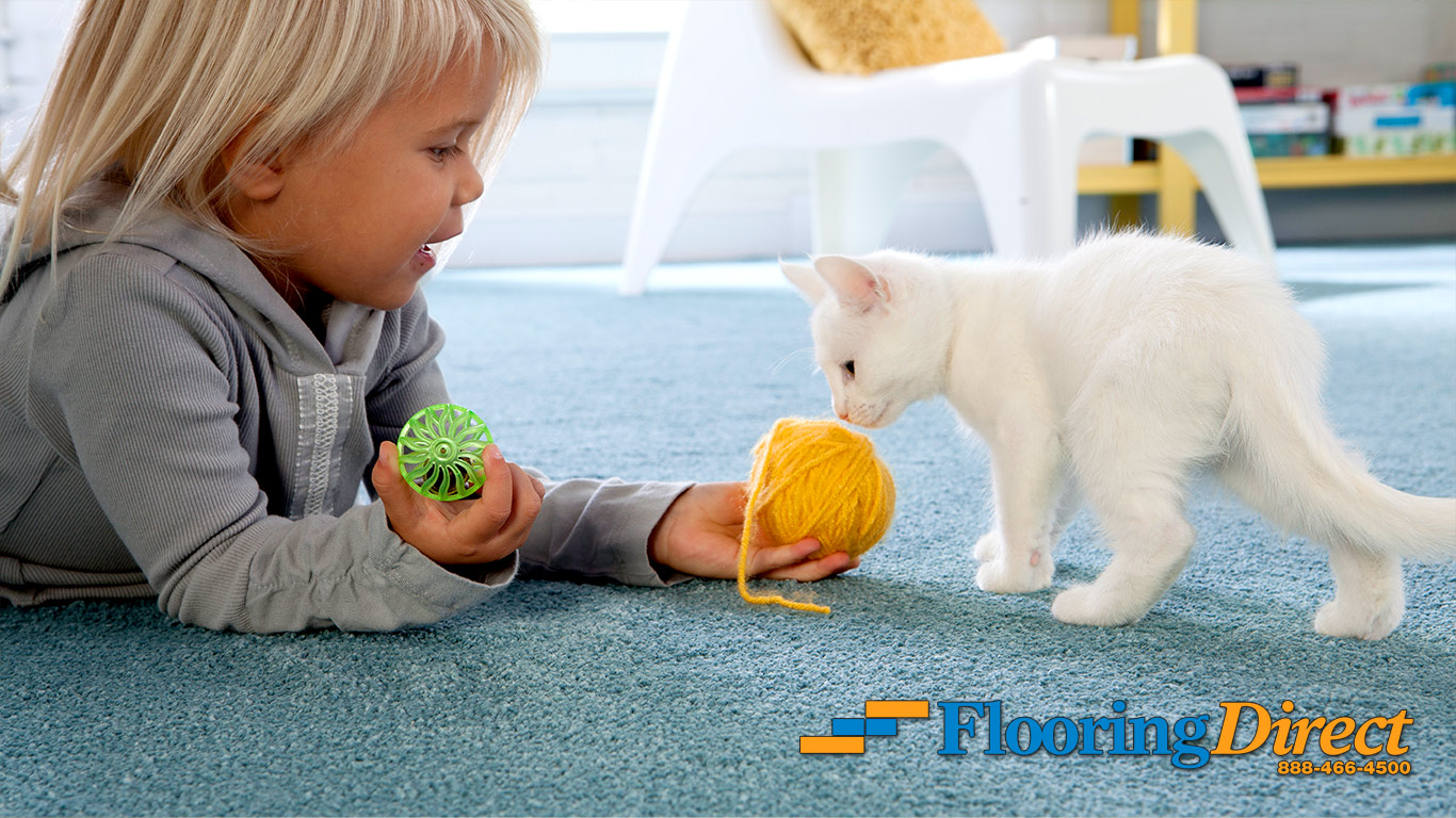 Cat Friendly Carpet with Magic Fresh from Flooring Direct