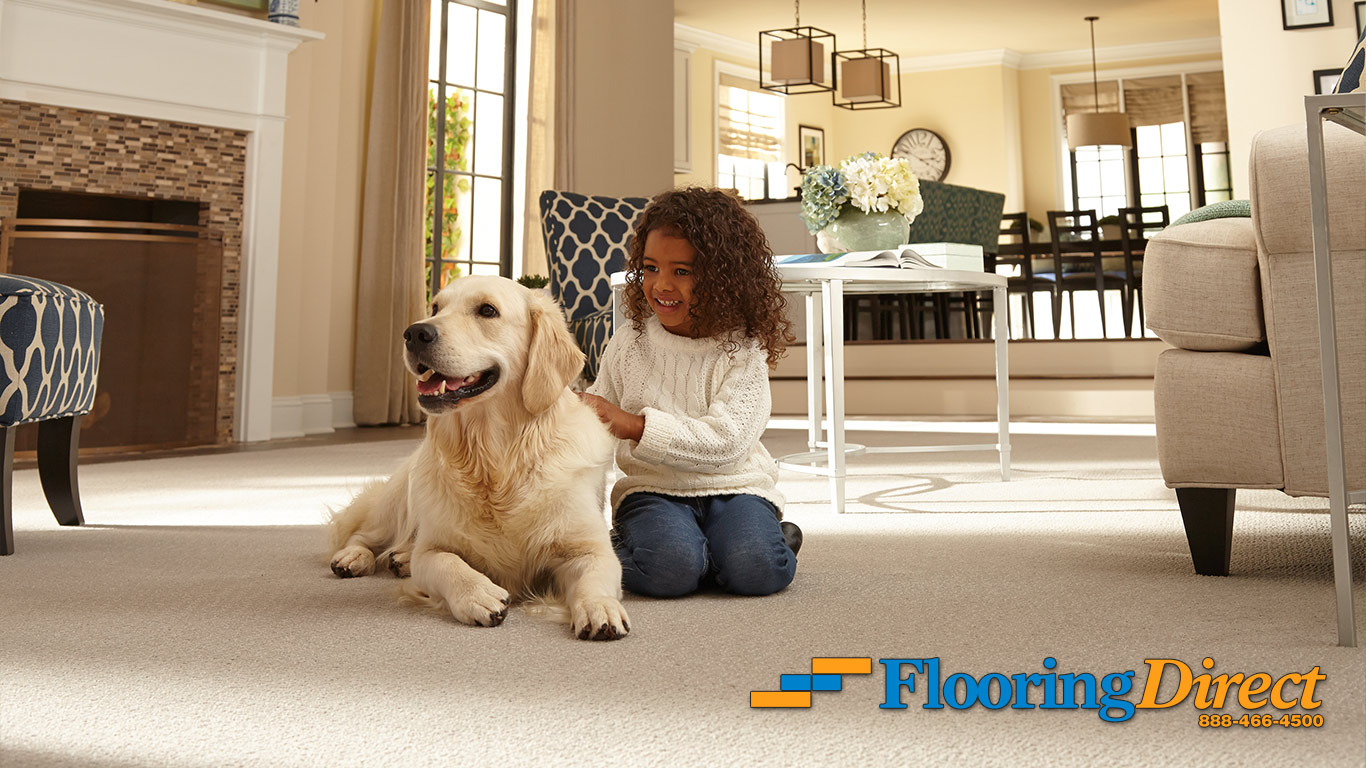 Dog Friendly Carpet with Moisture Barrier from Flooring Direct