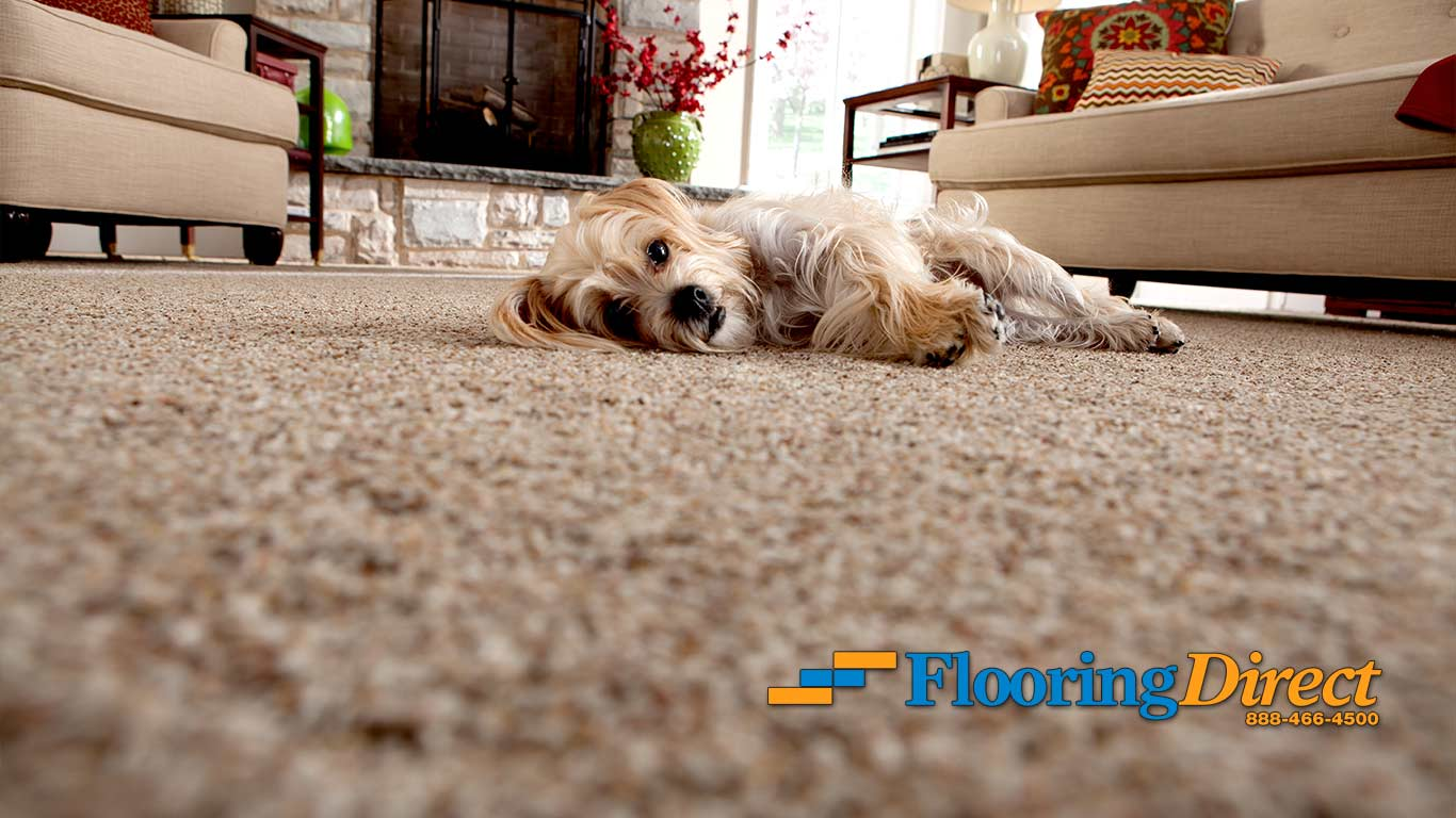 Flooring Direct Carpet Sales and Installation